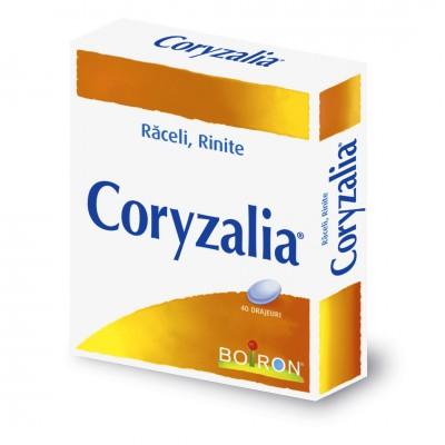 Coryzalia -drj x 40 - Boiron