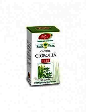 Fares Clorofila x 60cps.