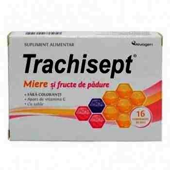 Trachisept Miere si Fructe de Padure -cpr. x 16 - Ozone