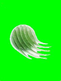 Vichy Dercos Micropeel Sampon Exfoliant Impotriva Matretii Aderente 200 Ml